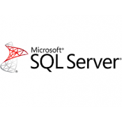 Microsoft SQL Server 2017 Standard OLP License  1 Server